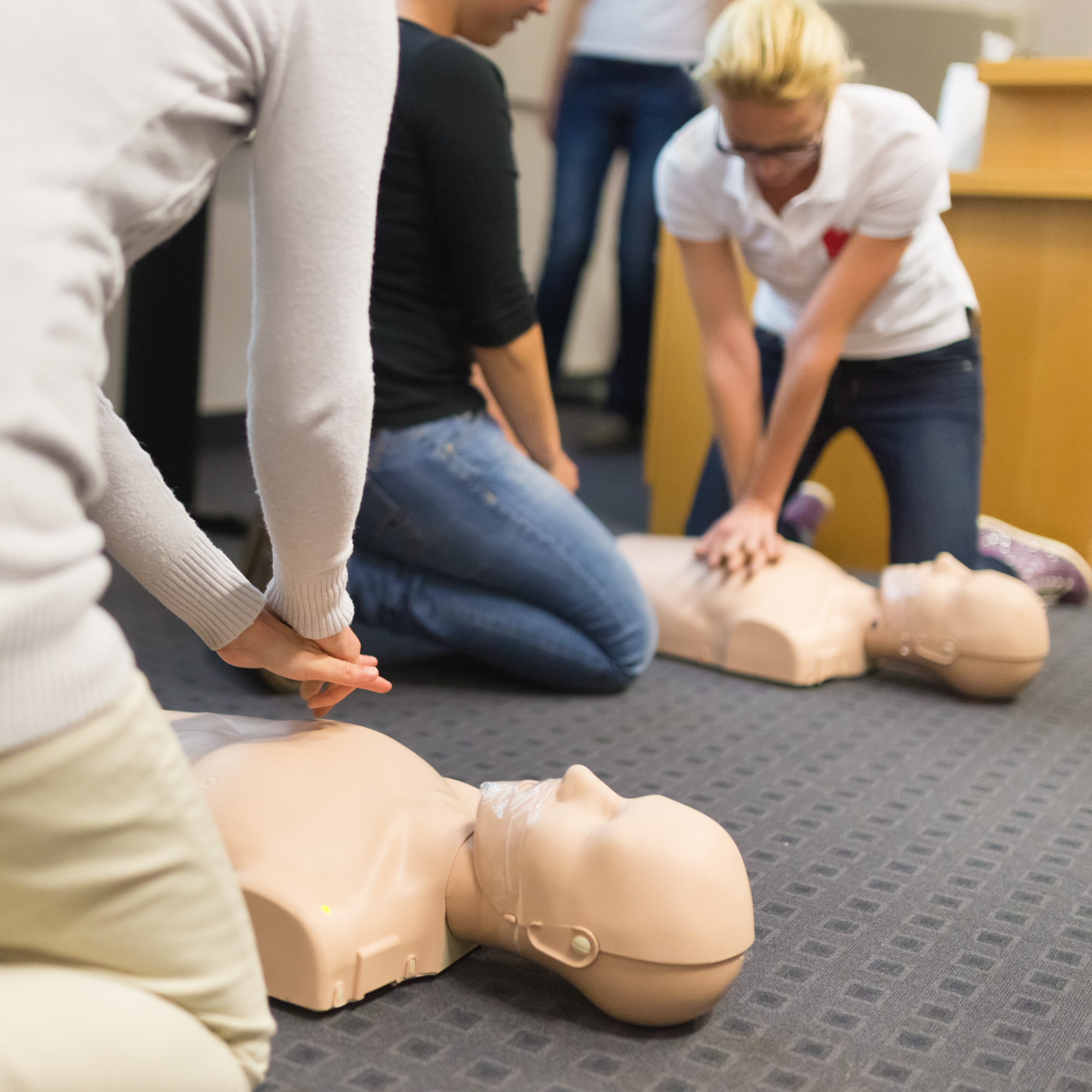 First aid CPR seminar,A group of adult education students practitcing CPR chest compressioon on a dummy.